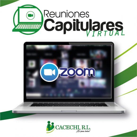 Noticia | Reuniones Capitulares 2021 (Modalidad Virtual)